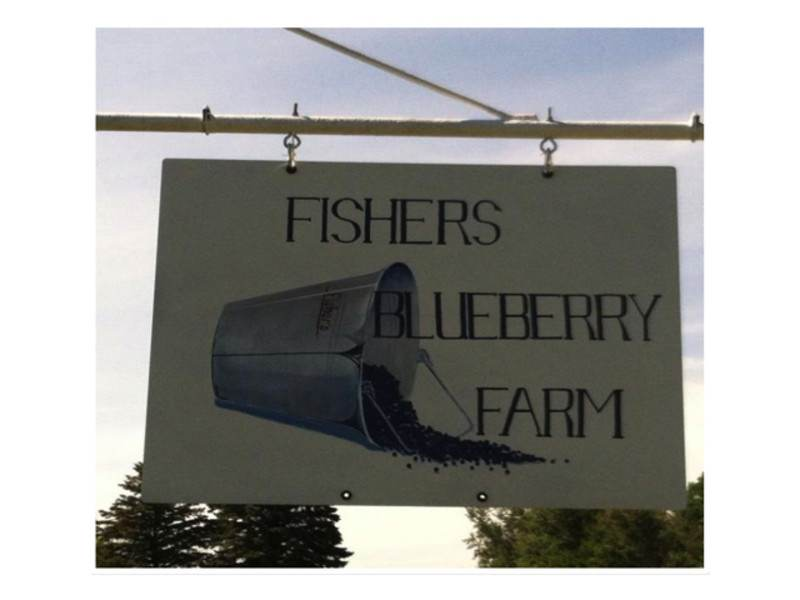 Fishers Blueberry Farm