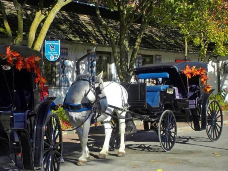 Frankenmuth Carriage